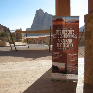 deserts2011